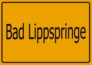 Autoankauf Bad Lippspringe