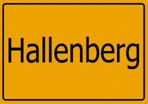 Autoankauf Hallenberg