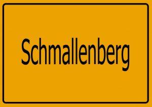 Autoankauf Schmallenberg